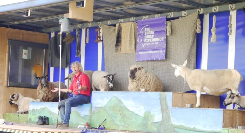 The Sheer Sheep Experience with Michael Churchouse